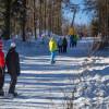 Nicht nur Skifahrer - auch Snowboarder - sind am Kornberg gern gesehen.