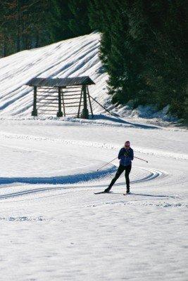 Loipen mit unterschiedlichen Längen und Höhendifferenzen warten darauf mit den Langlaufskiern erobert zu werden.