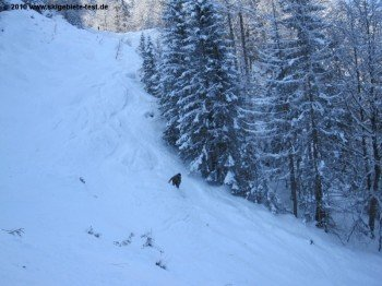 Snowboarder auf der Variante Eisgrube!