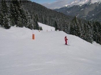 Schön für Familien: Die tiefer liegenden Regionen des Skigebietes bieten fast durchgehend blaue Pisten!