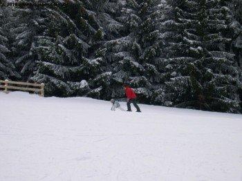 Die ersten Schritte auf Skiern können an allen drei Talstationen (Prapoutel, Pipay und Le Pleynet) bestens geübt werden!