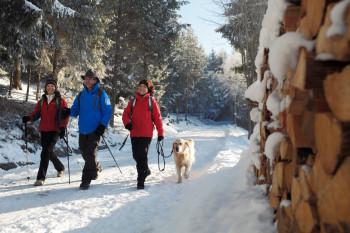 Der Hochschwarzwald lässt sich bei Spaziergängen gut entdecken.