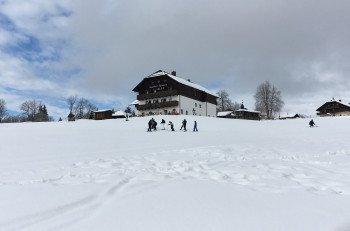 Einkehren kann man am Hang des Almwiesenlifts unter anderem im Gasthof Alpe.