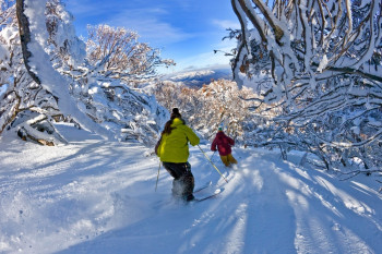 Mt Buller liegt in den Snowy Mountains.