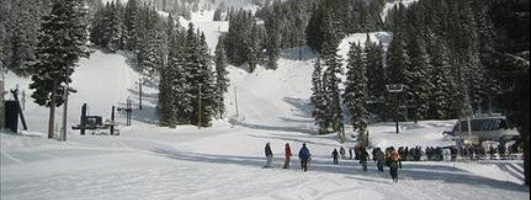 Mt Hood Meadows erstreckt sich über eine sehr große Fläche.