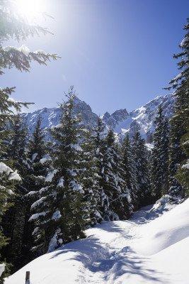 Die verschneiten Winterlandschaft im Muttereralmpark lädt zum Wandern.