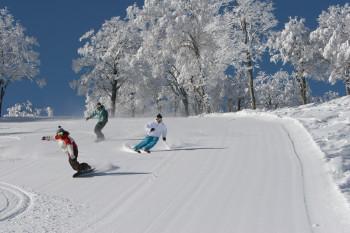 Ein wahres Schneeparadies! Eines der schönsten und expansivsten Wintersportgebiete Japans.