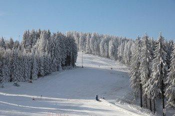 Zum Skifahren steht am Fallbachang eine 800 Meter lange Piste zur Verfügung.