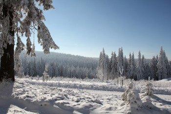 Die herrliche Winterlandschaft lädt nach dem Skifahren zum Spaziergang ein