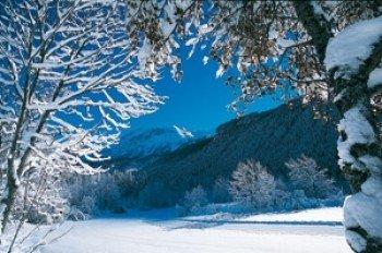 Entdecke die verträumte Winterlandschaft.