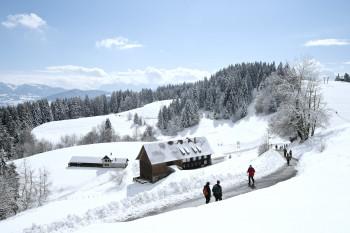 Der Pfänder liegt im Bregenzerwald am Bodensee.