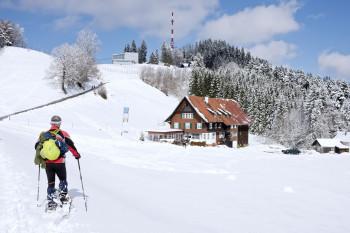 Der Pfänder ist auch bei Schneeschuh- und Winterwanderern beliebt.
