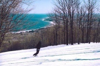 © http://www.skitheporkies.com