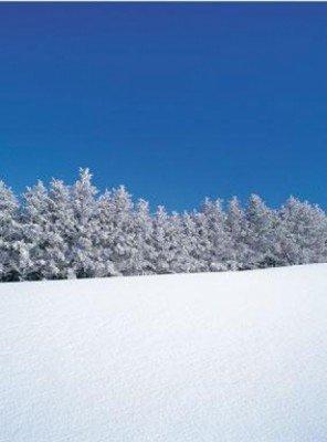 Wintersportler können im Skigebiet zwischen neun Abfahrten wählen