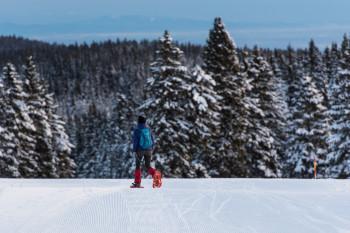 Auf geführten Schneeschuhwanderungen erkundest du die Landschaft rund um Rogla.