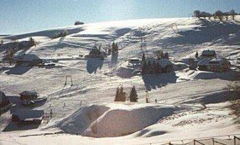 In Hofsgrund am Schauinsland warten fünf Skilifte auf dich.