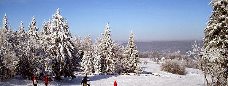 Der Rotterhang in Schellerhau