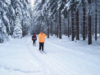 Die Langlaufloipen in Schöneck führen durch verzauberte Winterlandschaften