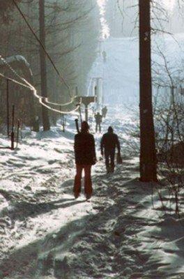 Drei Schlepplifte befördern Wintersportler im Skigebiet