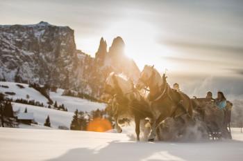 Pferdeschlittenfahrt über die tiefverschneite Seiser Alm