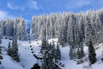 Die Skiarena Silbersattel gilt als schneesicherstes Skigebiet in Thüringen