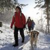 Entdecke den Hochschwarzwald auf einem der beschilderten Winterwanderwege!