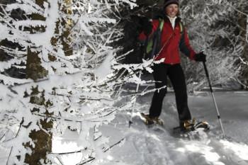 """Die Schneeschuhwanderung """"Rothaus"""" ist beschildert und führt bis zum Schluchsee."""