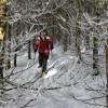 Bei Schneeschuhwanderungen kommt man der Natur besonders nah.