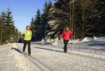 Am Bremberg gibt es gespurte Loipen, die alle Langlaufbegeisterten einladen eine Runde zu drehen.