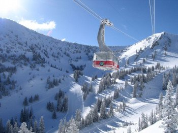 © Snowbird Ski & Summer Resort