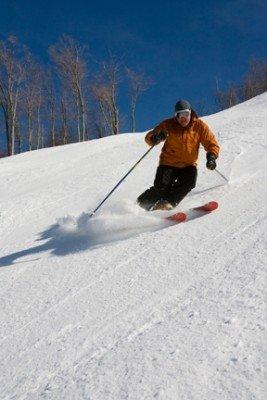 © www.snowshoemtn.com