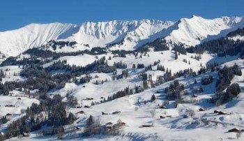 © http://www.skilifte-springenboden.ch/