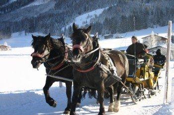 Romantische Pferdekutschfahrten durch St. Martin