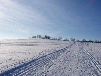 Es gibt mehrere Loipen im Wintersportgebiet.