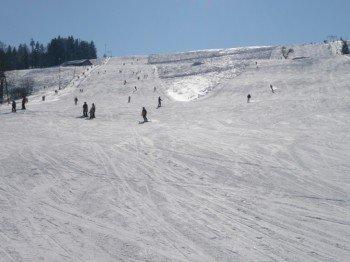 Das Skigebiet eignet sich besonders für Anfänger und Familien