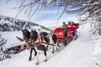 Bei einer Kutschfahrt lässt sich die Winterlandschaft bequem erkunden.