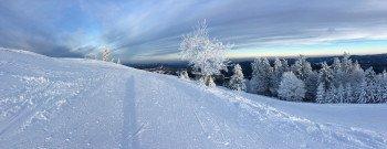 Insgesamt 16 Pistenkilometer warten auf Anfänger und geübte Fahrer im Skigebiet Unterberg in Niederösterreich.