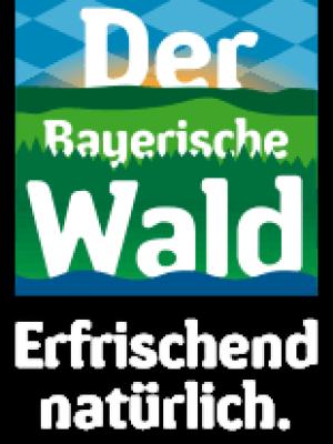 Logo Skigebiet Oberfrauenwald
