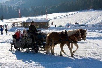 Nach einem schönen Tag auf der Piste lässt sich die Winterlandschaft bequem auf dem Pferdeschlitten erkunden.