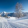 45 Pistenkilometer für Anfänger und Könner in Zauchensee/Flachauwinkl