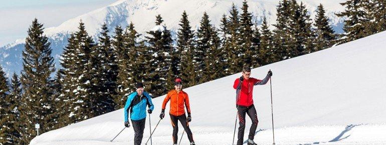 Entdecke die verschneite Winterlandschaft entlang der Welchsel-Panoramaloipe.