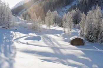 Langlaufen in der idyllischen Natur rund um Davos und Klosters.