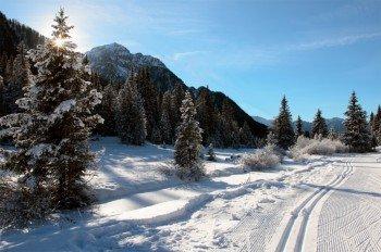 Auf den Loipen kann man durch die herrliche Winterlandschaft gleiten.