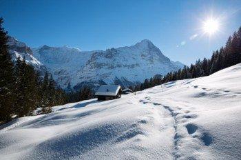 Winterwunderland im Berner Oberland
