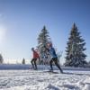 Für begeisterte Langläufer werden im Hochschwarzwald täglich über 700 km Loipen von mehr als 22 Loipenspurgeräten präpariert.