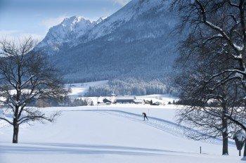 Beim Langlaufen kann man die winterliche Natur in vollen Zügen genießen.