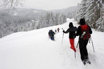 Auf Schneeschuhen durchs winterliche Voralpenland