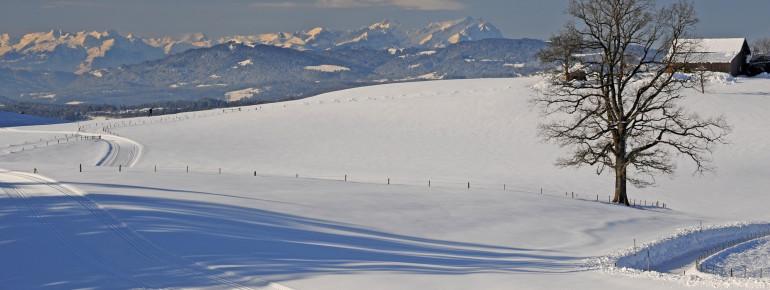 Langlauf mit Blick auf die Nagelfluhkette im Voralpenland bei Isny im Allgäu