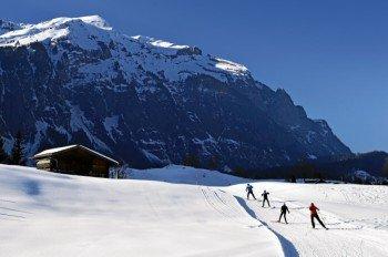 Mehr als 50 Kilometer Loipen führen durch die winterlich Landschaft.