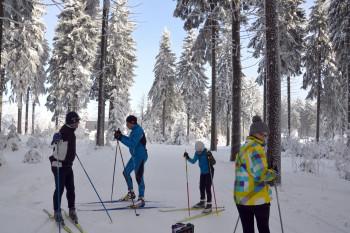 Teilweise führen die Loipen in Klingenthal auch durch den Wald.